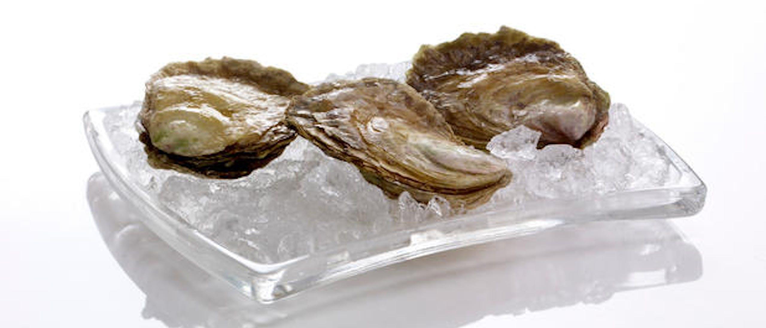AApning-av-oesters large