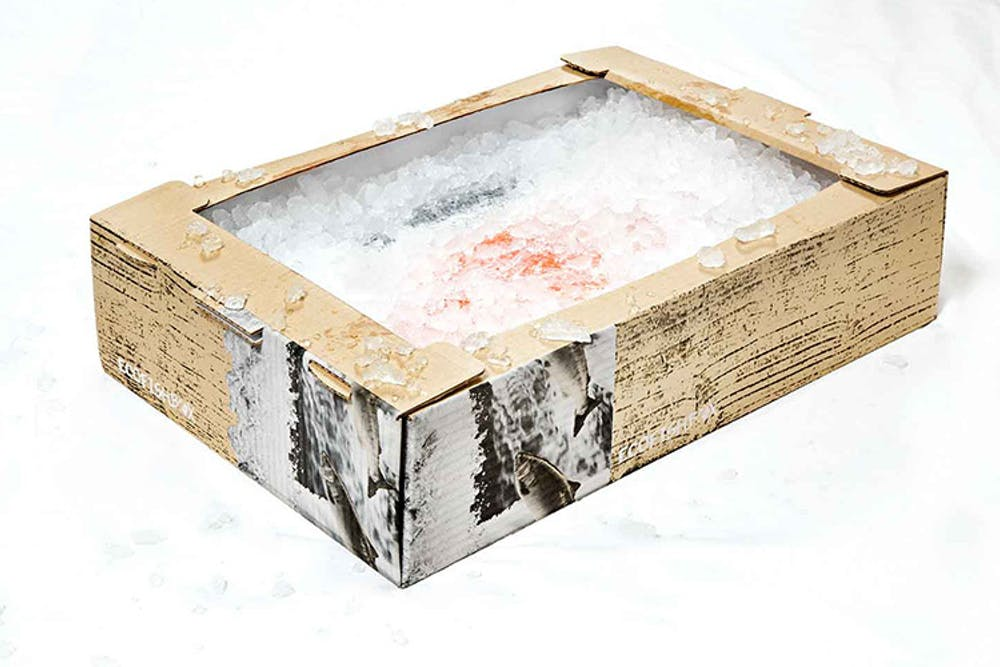 Eco Fish Box Ice 770X500